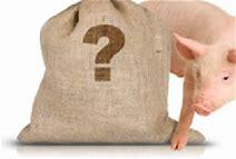 gris i säck